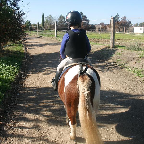 Balades en poney pour enfants à Vitrolles