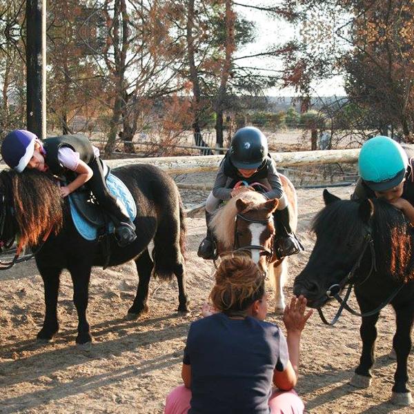 Stages de poney enfant - Pony Baby - Vitrolles