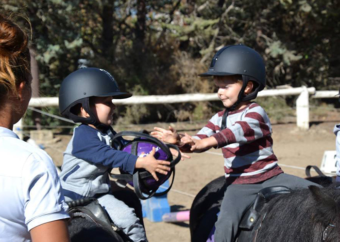 Pony Baby Vitrolles - cours, stages, balades, anniversaires poney pour enfants