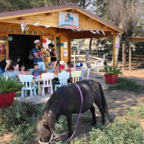 anniversaires-enfants-poney-pony-baby-vitrolles-7